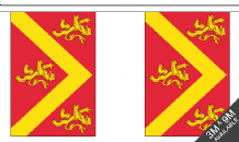 ANGLESEY BUNTING - 3 METRES 10 FLAGS